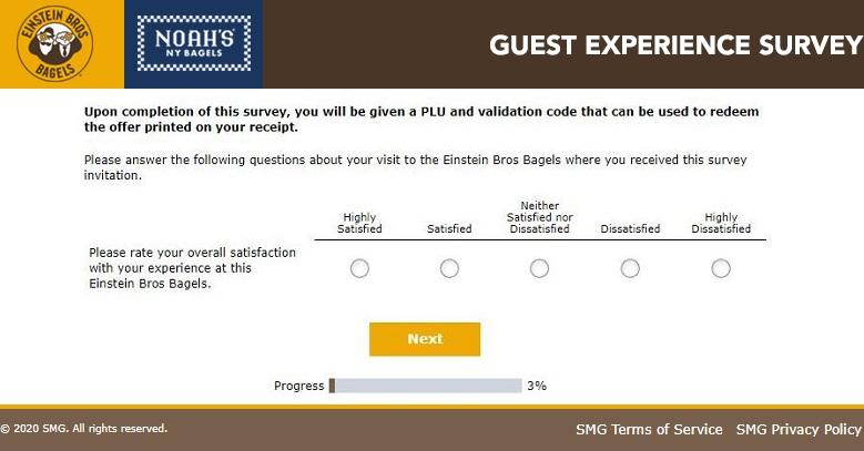 BagelExperience Survey Questions
