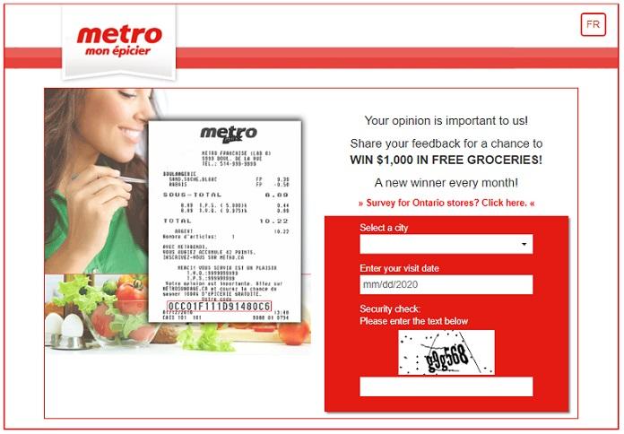 Metro Sondage Survey