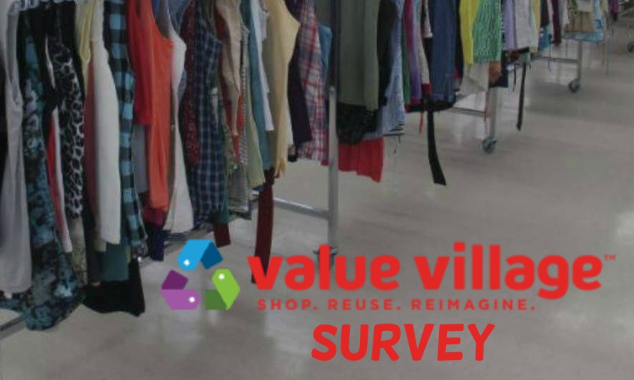 Valuevillage Survey