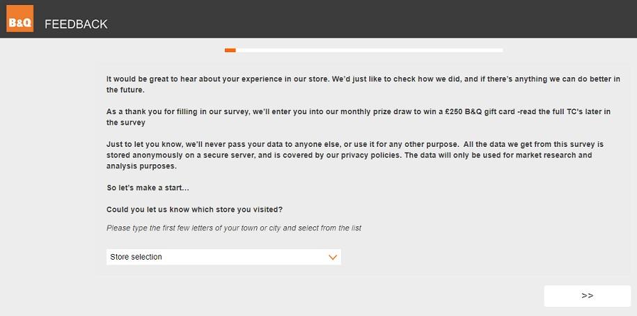 B&Q Chester Customer Satisfaction Survey