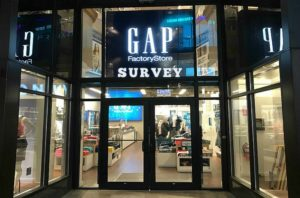 Gap Survey