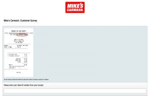 Mikescarwash-survey